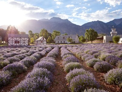 Young Living Lavender Farm and Distillery - Mona, Utah, USA